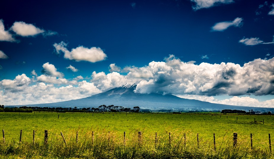 Taken on the surf highway on the way to New Plymouth.