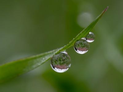 Water Drop Parade 3-3