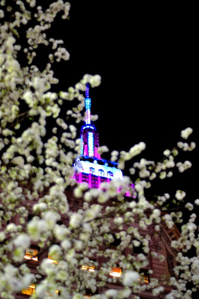Empire State in Spring