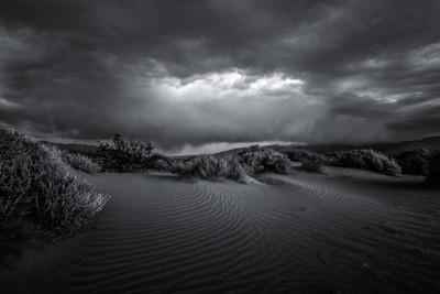 Desert Storm IV