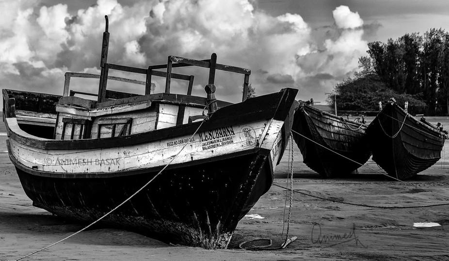 Photographed at Talsari Beach, Odisha, India
