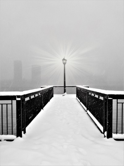 Through the falling snow