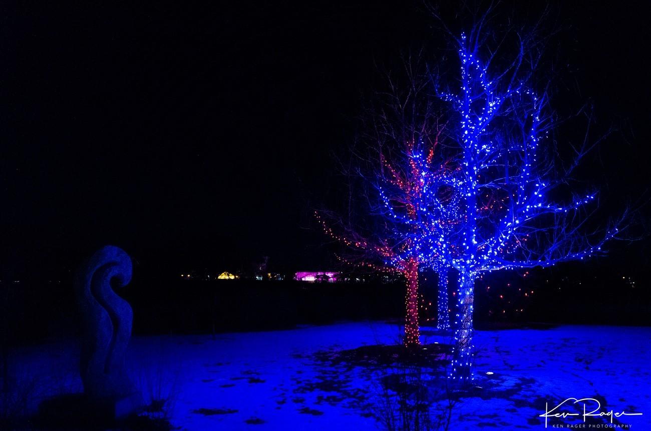 Springcreek Lights (20 of 30)
