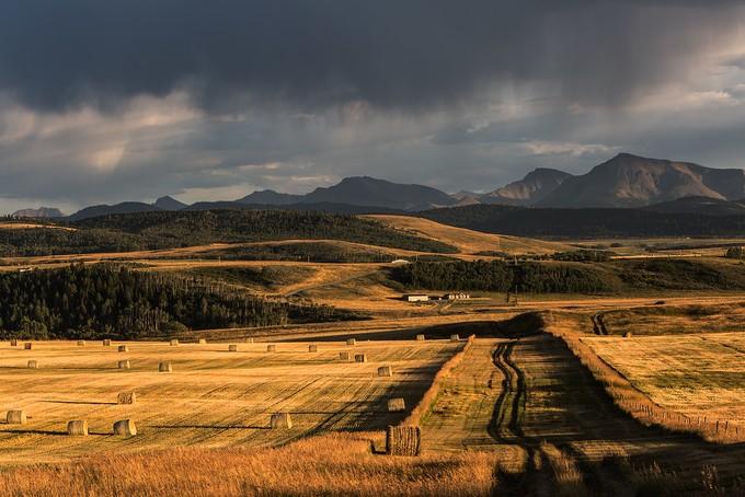 Alberta Prairies by JEKAMOBILE - Country Roads Photo Contest