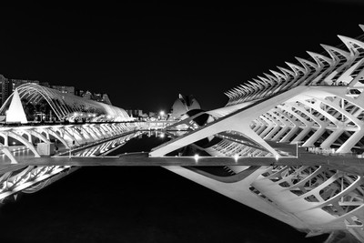 City of Arts and Sciences Full View
