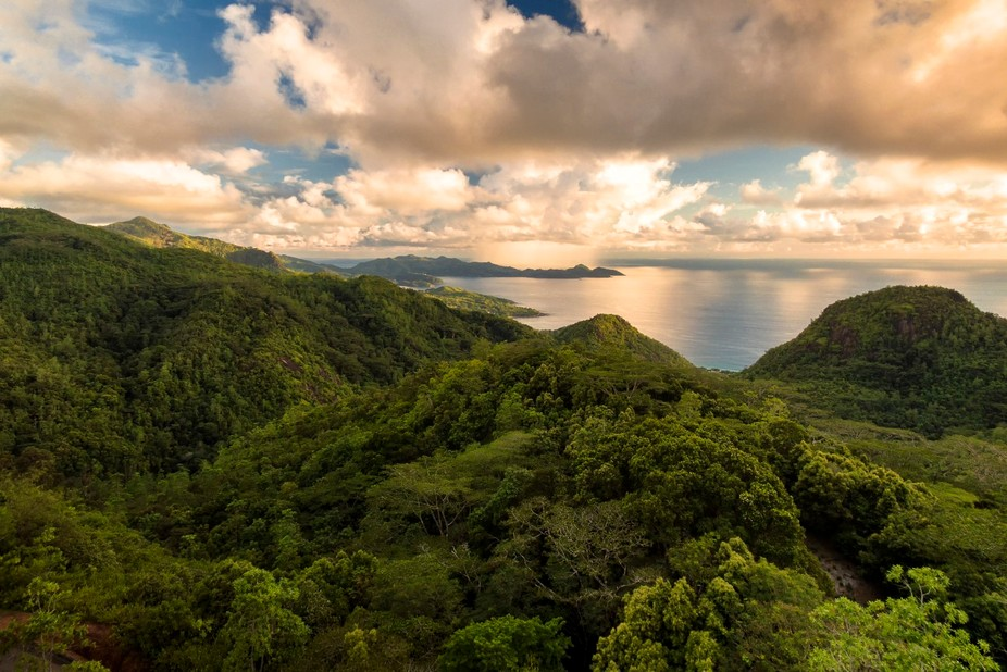 When I was on vacation in the Seychelles, we rented a car and drove to one of the highest points ...