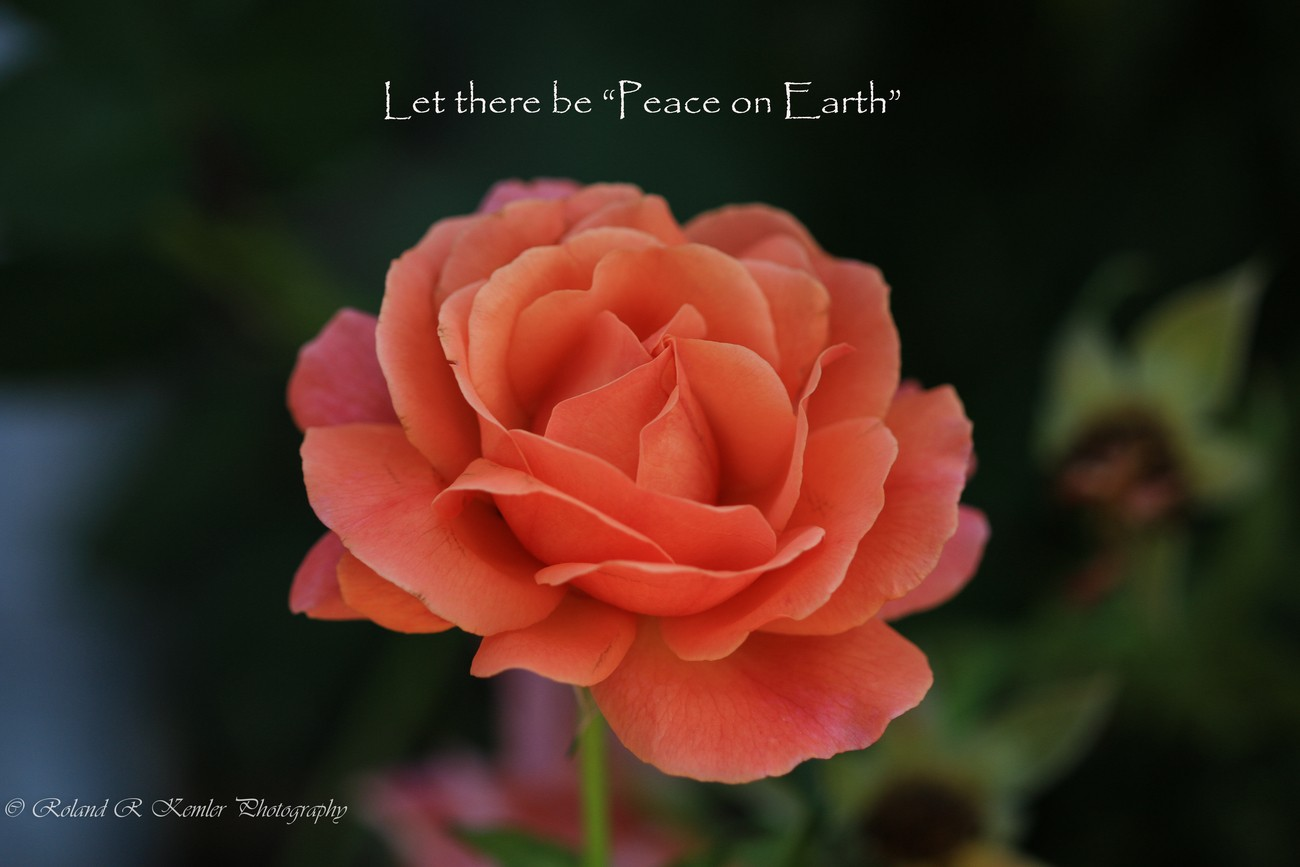 "Let there be ""Peace on Earth"""