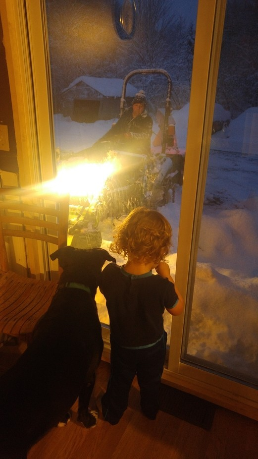 This is my three year old and his best buddy with fur named Jude. When they saw Daddy blowing sno...