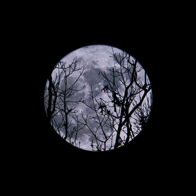 December 2016 - Full Cold Moon