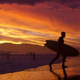a surfer exits the ocean during an amazing sunset in venice, california.