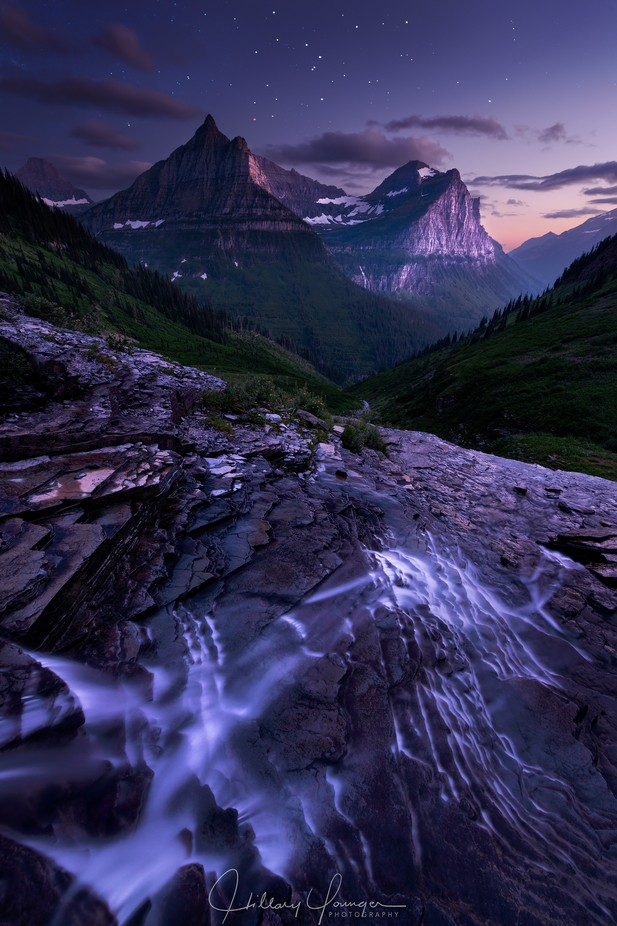 Falling Desire by hillaryyounger - Celebrating Nature Photo Contest Vol 3