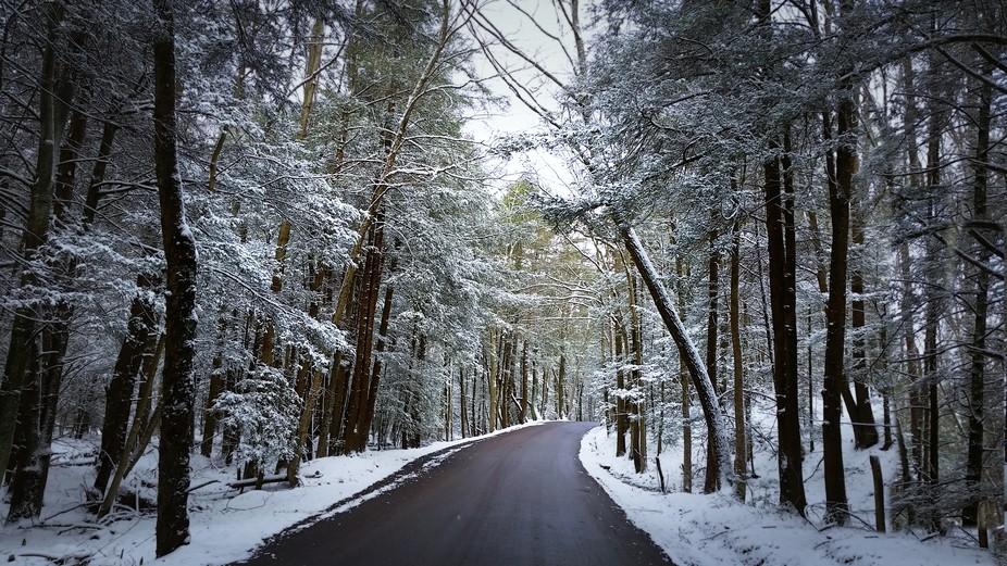 Magical trip through a late spring snowfall