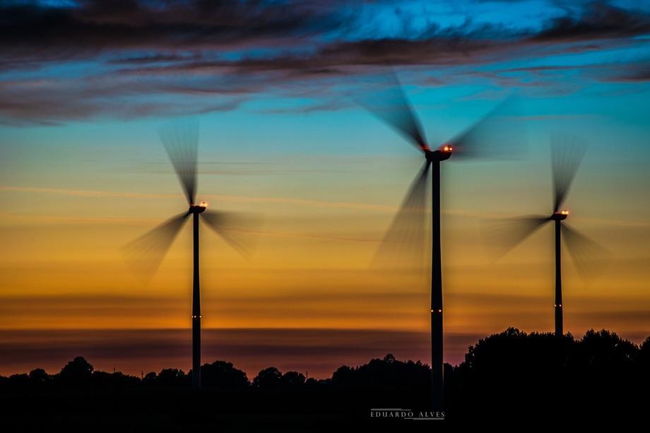 windmills @sunset
