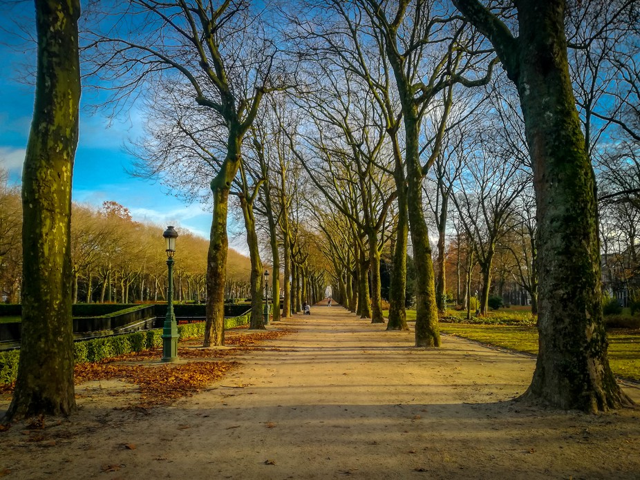 Beautiful walk in Elisabeth Park, Brussels