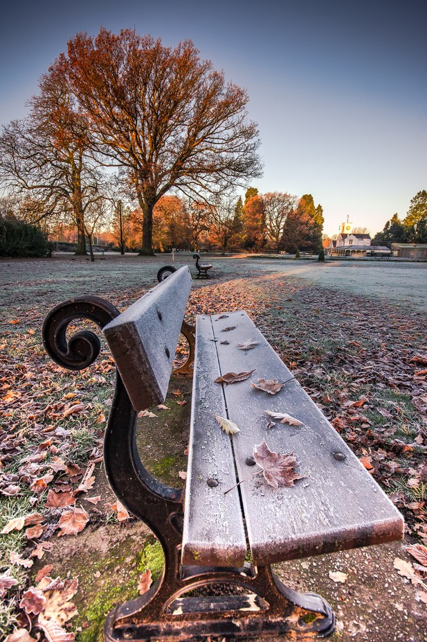 Autumn Leaves & Frosted Benches (Portrait). by michaelatkinson_5804 - My Favorite Chair Photo Contest