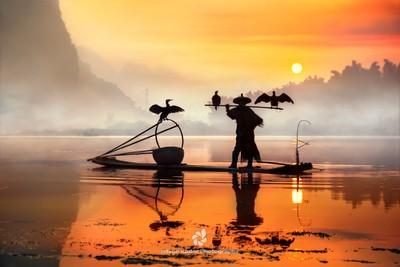 Sunrise Silhouette of Cormorant Fisherman