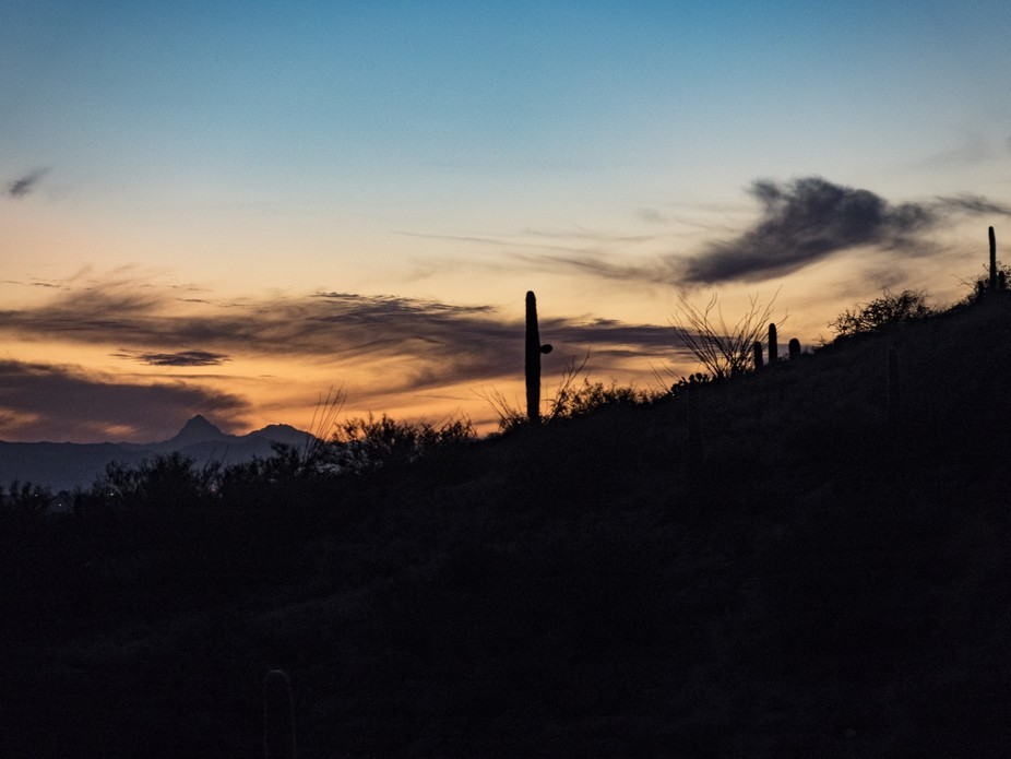 the 3 shades of dusk in the desert with a saguaro standing tall.