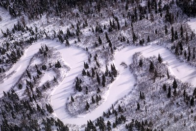 A MEANDERING STREAM WINDS THROUGH A FOREST IN WINTER