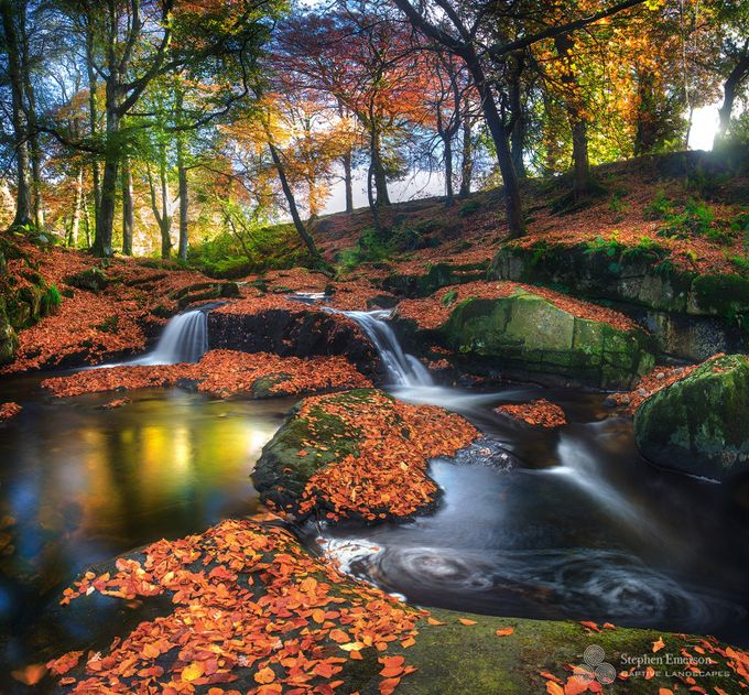 Cloughleagh Forest by stephenemerson - Fall 2017 Photo Contest