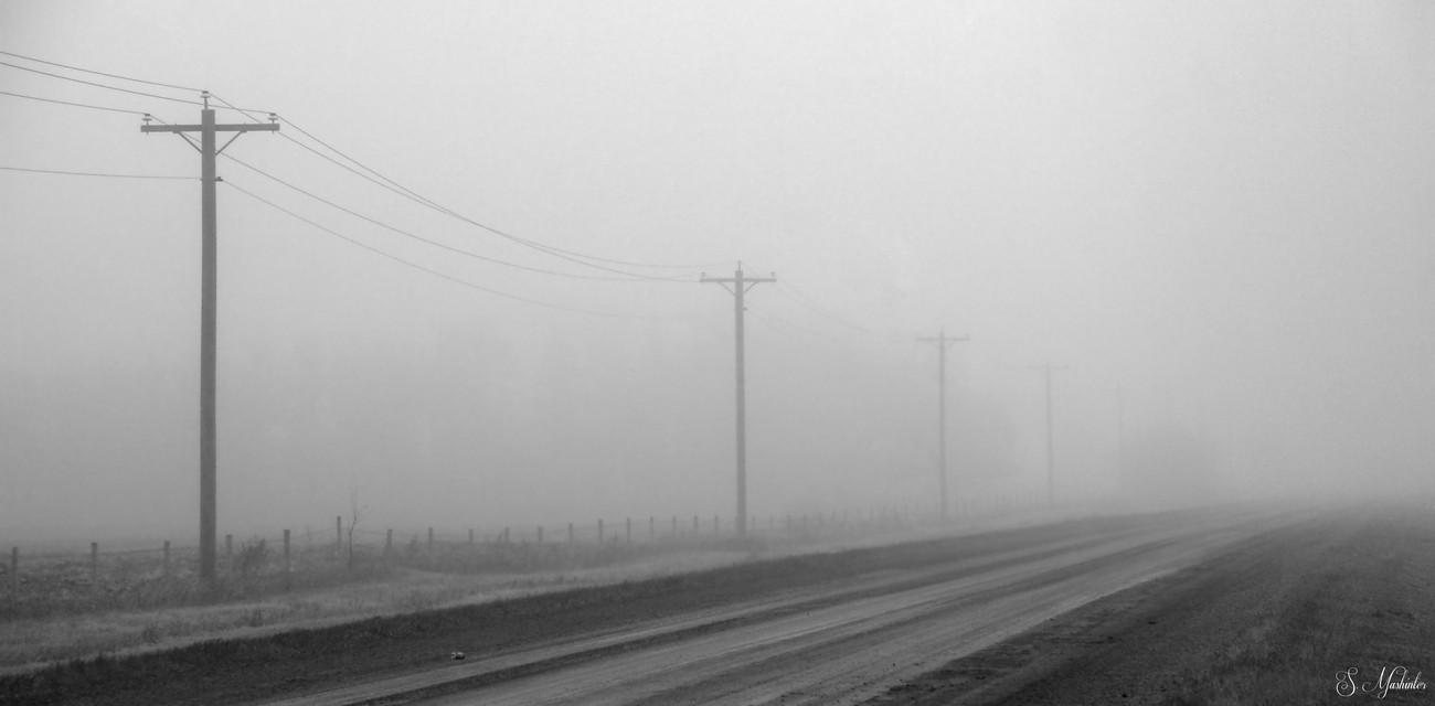 Foggy Travel