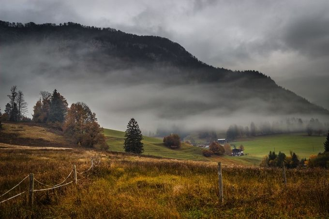 misty morning in the alpes by RalfvonSamson - Mist And Drizzle Photo Contest
