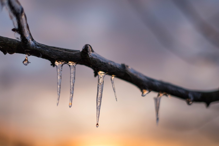 Another version of the sun setting with Icicles in the foreground. Shot on Canon 6D and Sigma 50m...