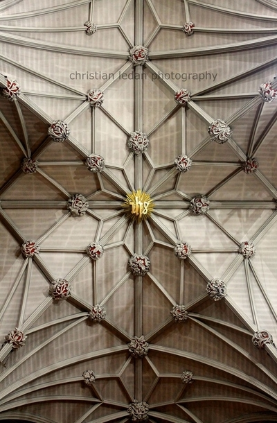 St. Patrick's Cathedral - Ceiling
