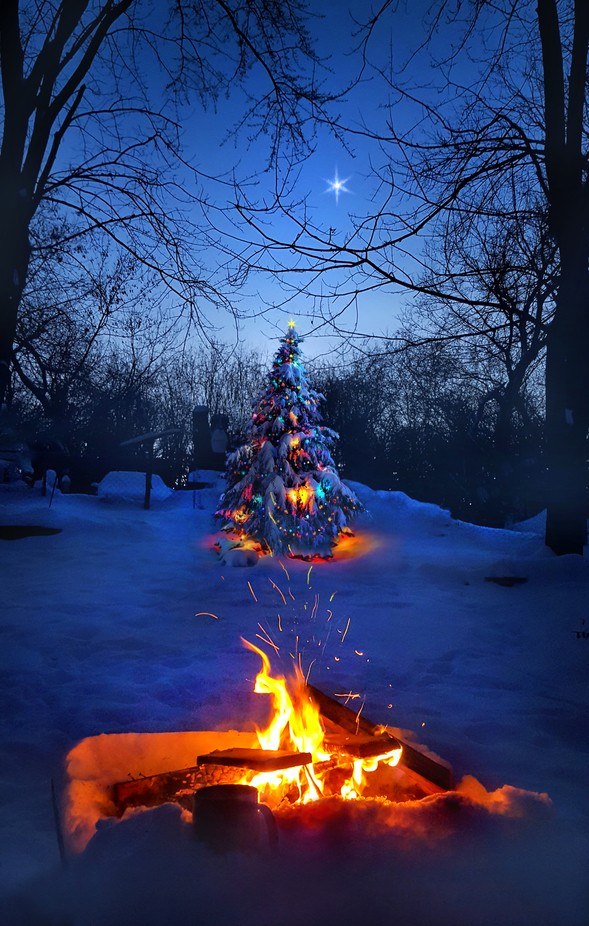 Merry Christmas by phil1 - Holiday Lights Photo Contest 2017