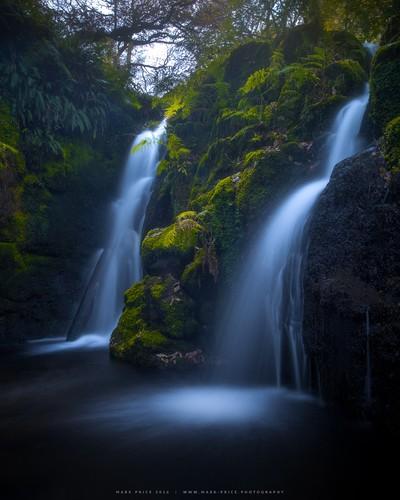 Falls in the Ravine
