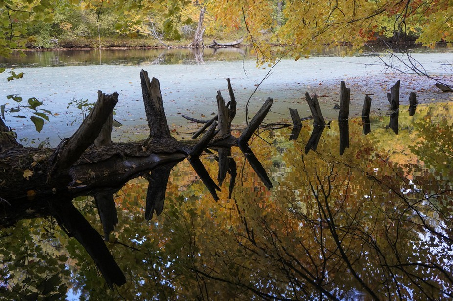 Mine Falls Park - In the middle of the city of Nashua, New Hampshire, who would imagine such a tr...