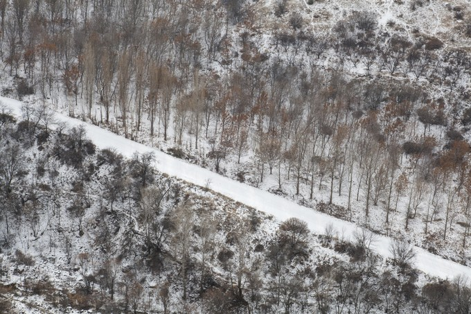 Road through trees by hrachess - Winter Roads Photo Contest