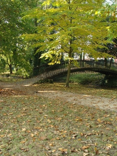 Little bridge at the parc