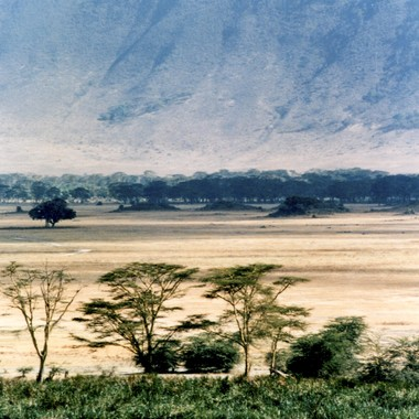 Ngoro Ngoro Crater Tanzania