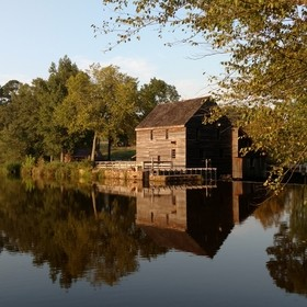 Yates Mill Pond, Cary, NC