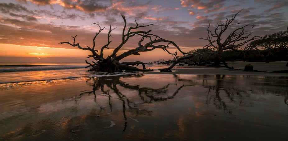 Here is a shot I got on Christmas Eve Morning at Driftwood Beach on Jekyll Island, GA. The tide w...