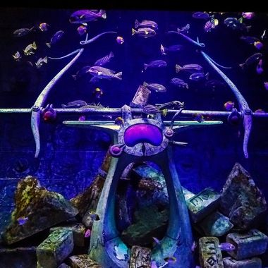 """Aquarium (3), Atlantis Hotel - The """"Dubai"""" Collection"""
