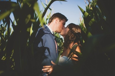 love in the corn