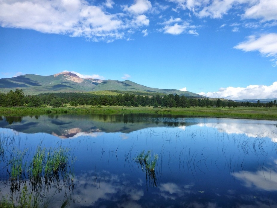 Wilson Mesa, NM. The tall peak of Baldy Mountain reflects on a serene lake in the high country of...