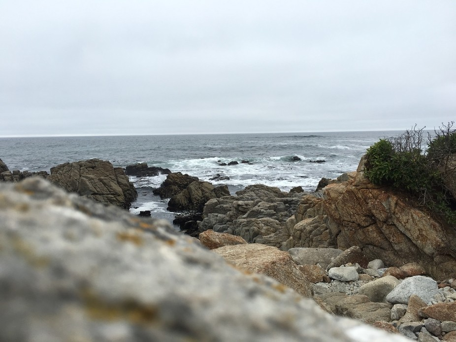 Taken during a trip to California in Monterey Bay.