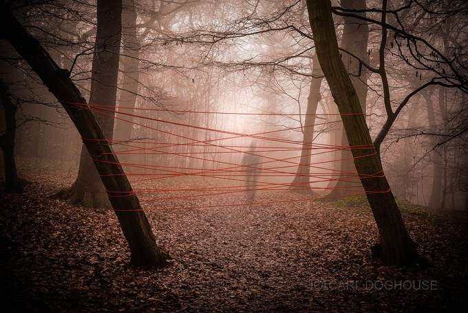 GHOST TRAPPING by carl_doghouse - A Walk In The Mist Photo Contest