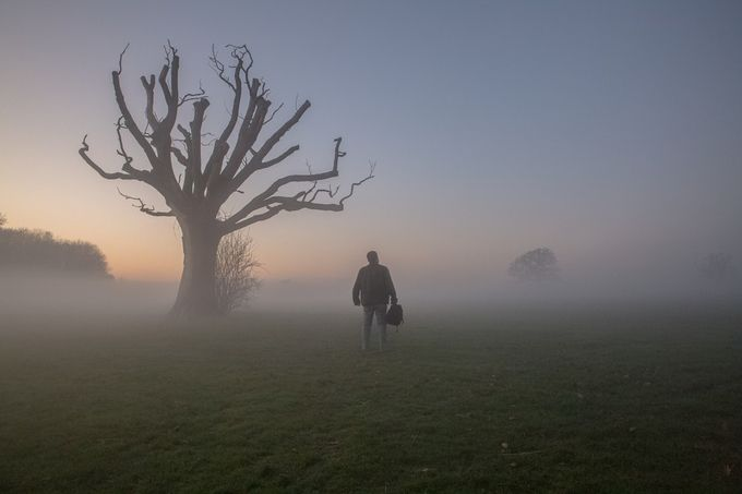 59 Incredible Photos Where The Mist Wins