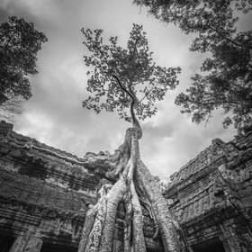 Ta Prohm is the modern name of the temple at Angkor, Siem Reap Province, Cambodia. The blockbuster Lara Croft: Tomb Raider were filmed here.