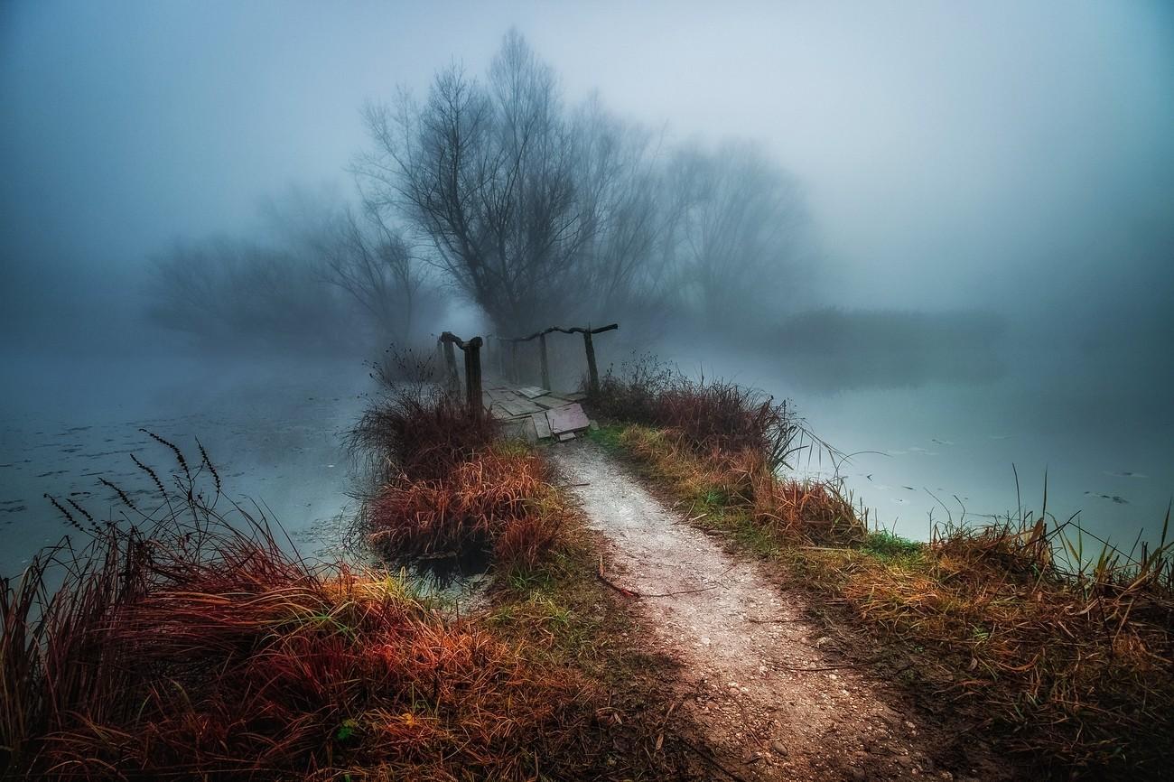 33+ Photos Where The Mist Takes Over