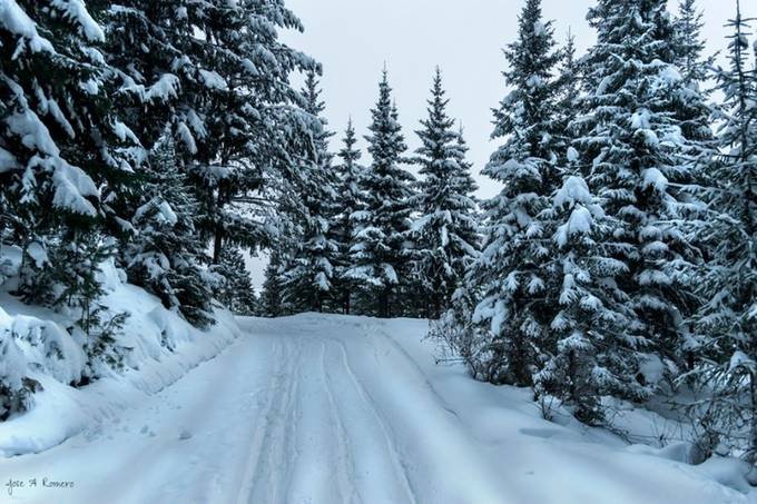 Winter road by Rommerus - Winter Roads Photo Contest