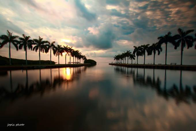 HEAVEN ON EARTH by JOPIZ - Palm Trees Photo Contest