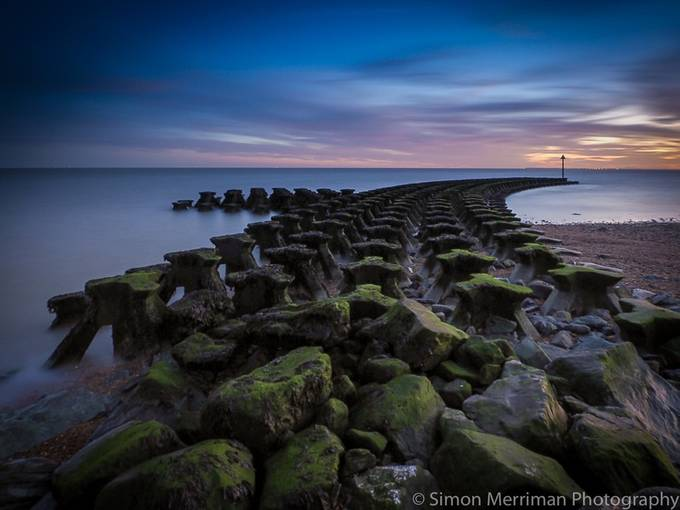 Reaching for the sunset by simonmerriman - Image Of The Month Photo Contest Vol 18