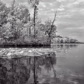 Black and white conversion from infrared.  Original print size 16x20