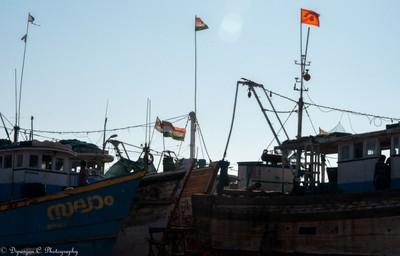 Boats of varying size and style at Gurupura river