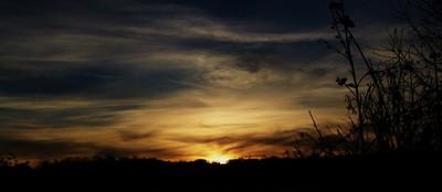 Moist Sunset