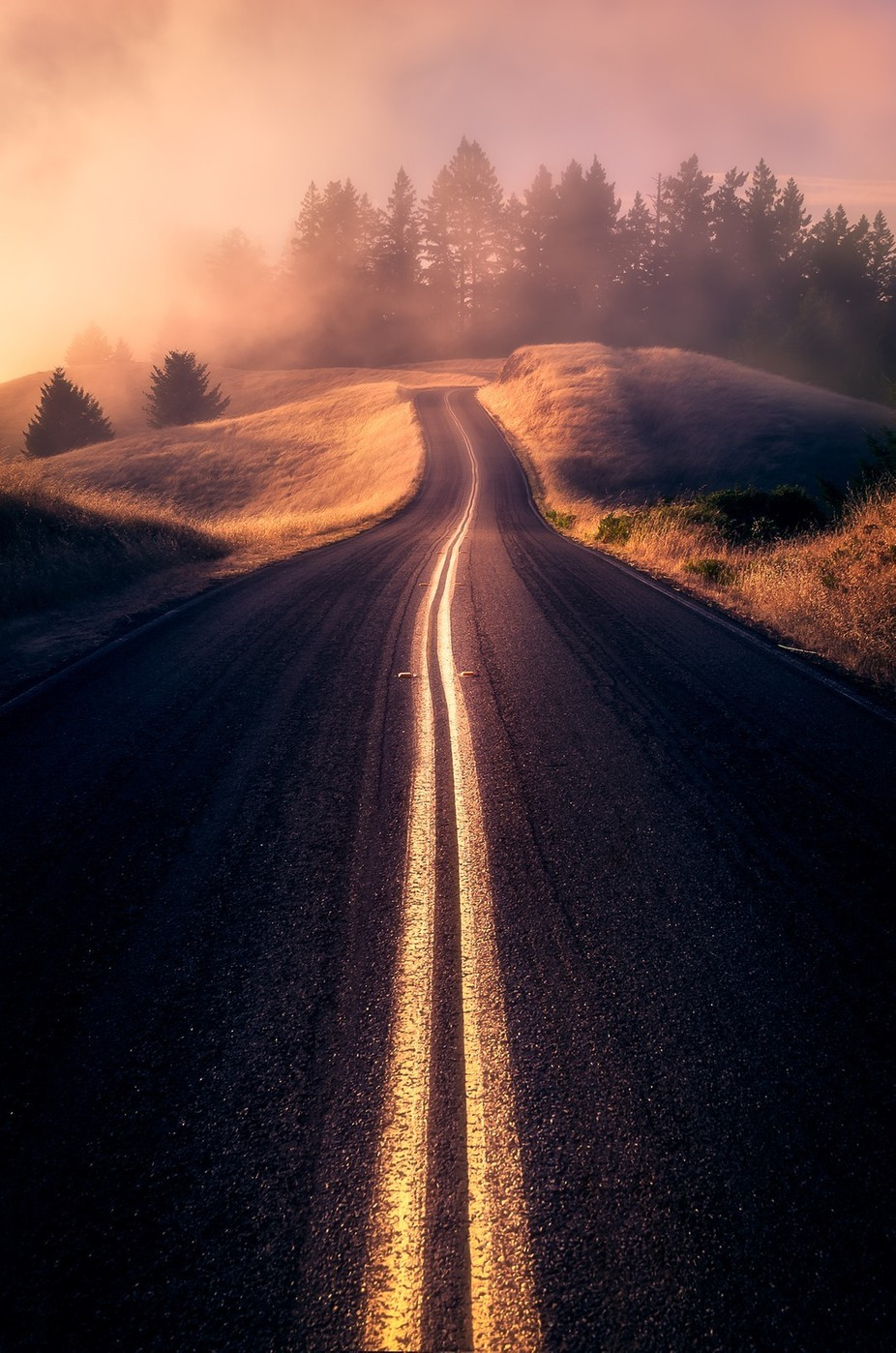 Golden Road by BastianHoppe - Compositions 101 Photo Contest vol4